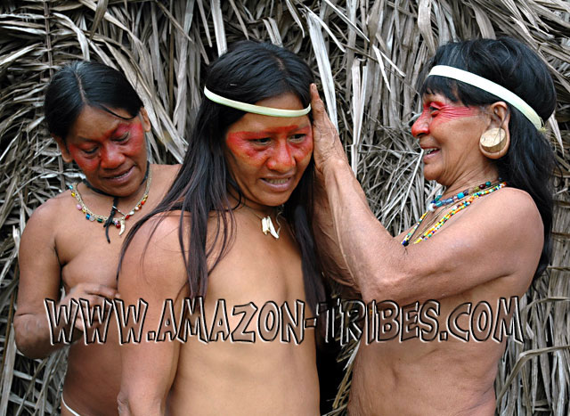 The Amazon tribe girl illustrated in this picture has female body painting ...