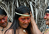 Amazon Tribe Girl